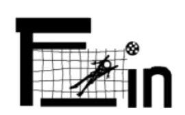 Logo F_in Frauen im Fußball